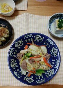 ねこぶだし(野菜炒め)