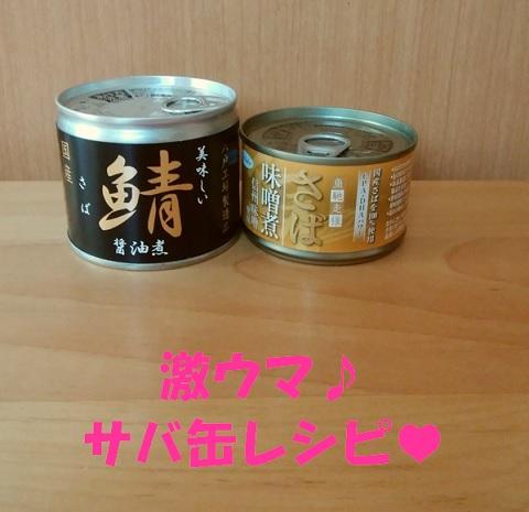 鯖缶が激ウマに変わる美味しいレシピ♪こんなに美味しかったのね~